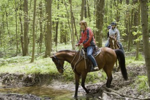A family horseback rides on a trail in the forest.